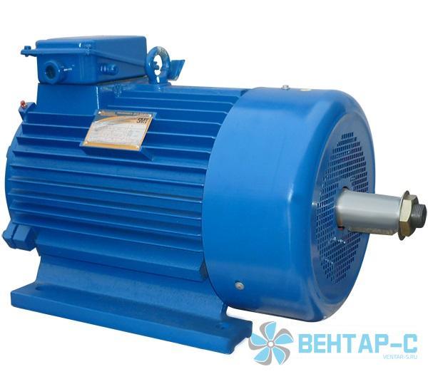 Электродвигатели серии 5МТКН 200 с короткозамкнутым ротором