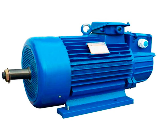 Электродвигатели серии 5МТН 713-10