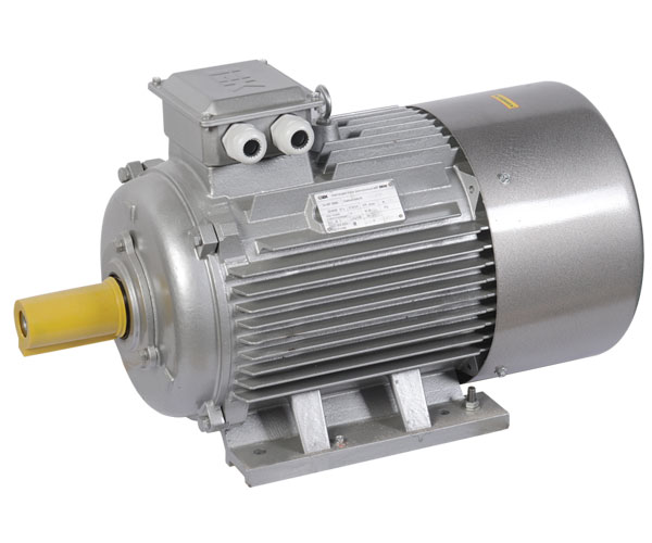 Электродвигатель АИР 180M2 660В 30кВт 3000об/мин 1081 DRIVE IEK